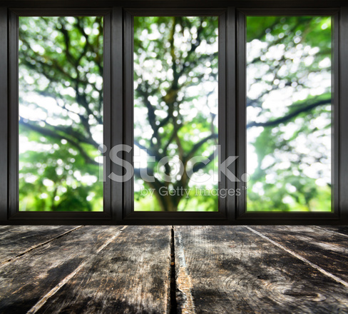 Window Frame With Blur Tree Branch Stock Photos