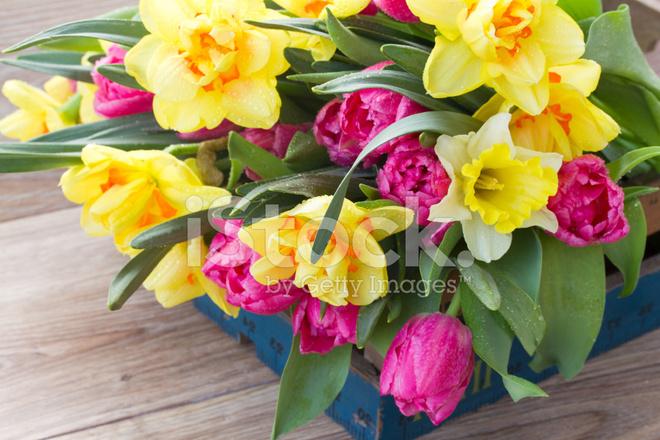 Mazzo Di Fiori Di Primavera.Mazzo Di Fiori Di Primavera Fotografie Stock Freeimages Com