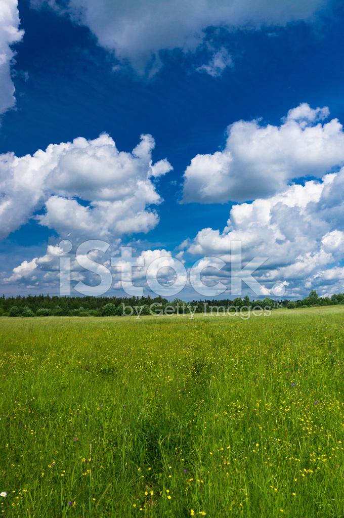 Sunny landscape stock photos for Sunny landscape designs