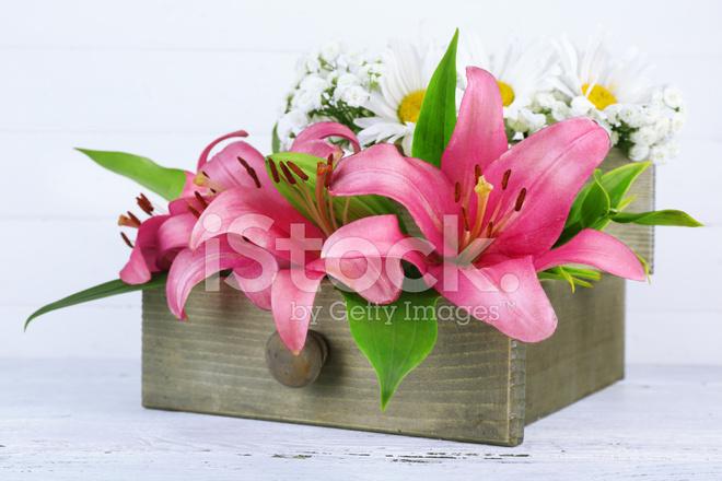 Lindas Flores Numa Caixa Com Fundo De Madeira Fotos Do Acervo