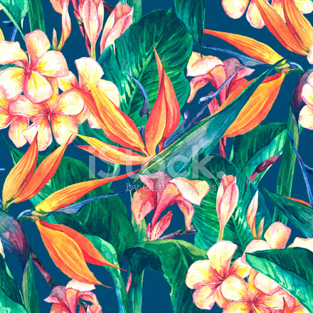 tropical seamless pattern with exotic flowers stock vector
