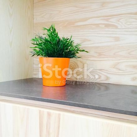Groene plant decoreren houten keuken stockfoto's   freeimages.com