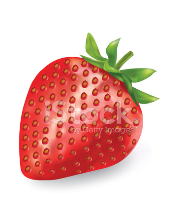 strawberry illustration stock vector freeimages com strawberry illustration stock vector