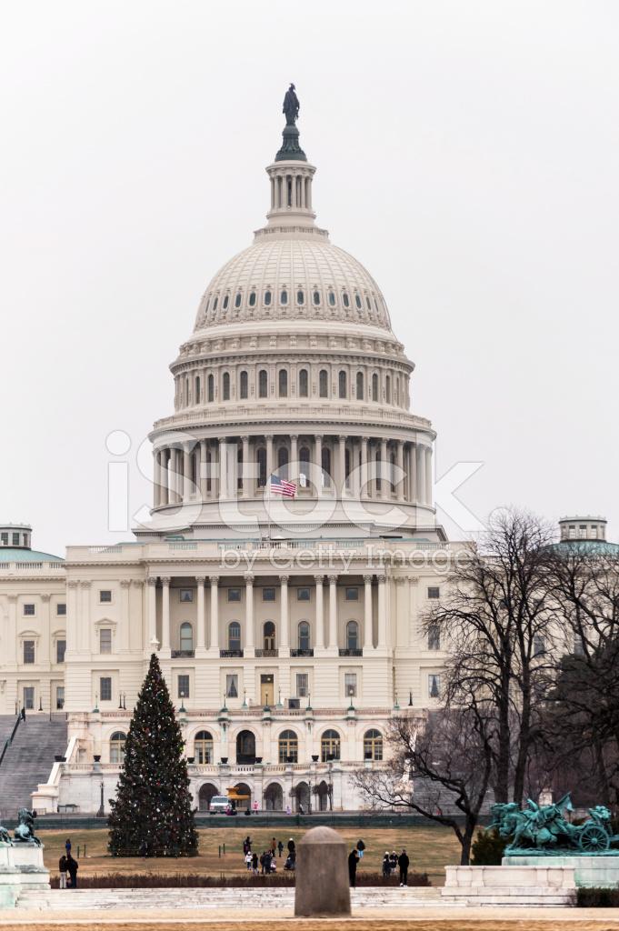 Albero Di Natale Washington.Capitol Building E Albero Di Natale A Washington Dc Fotografie Stock Freeimages Com