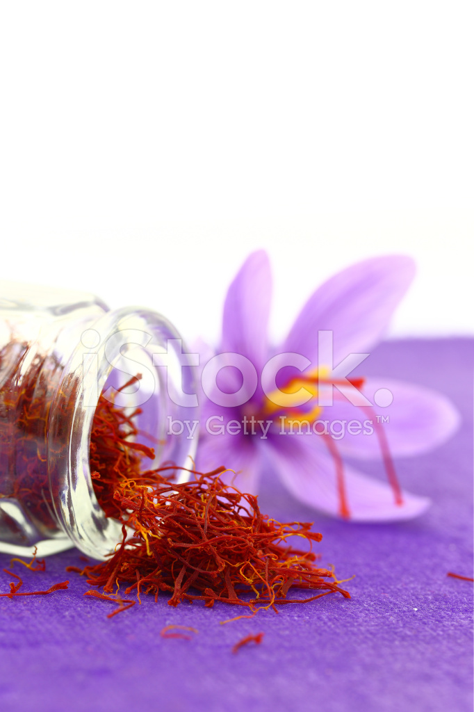 Close UP of Saffron Flower and Dried Saffron Spice stock photos ...