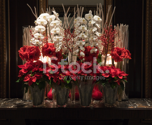 Red poinsettia and white orchid christmas flower Christmas orchid arrangements