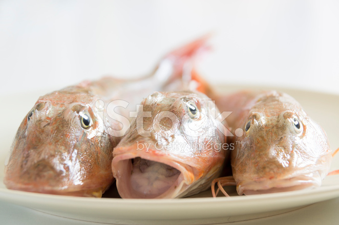 Fresh Fish With Red Scales Stock Photos - FreeImages com