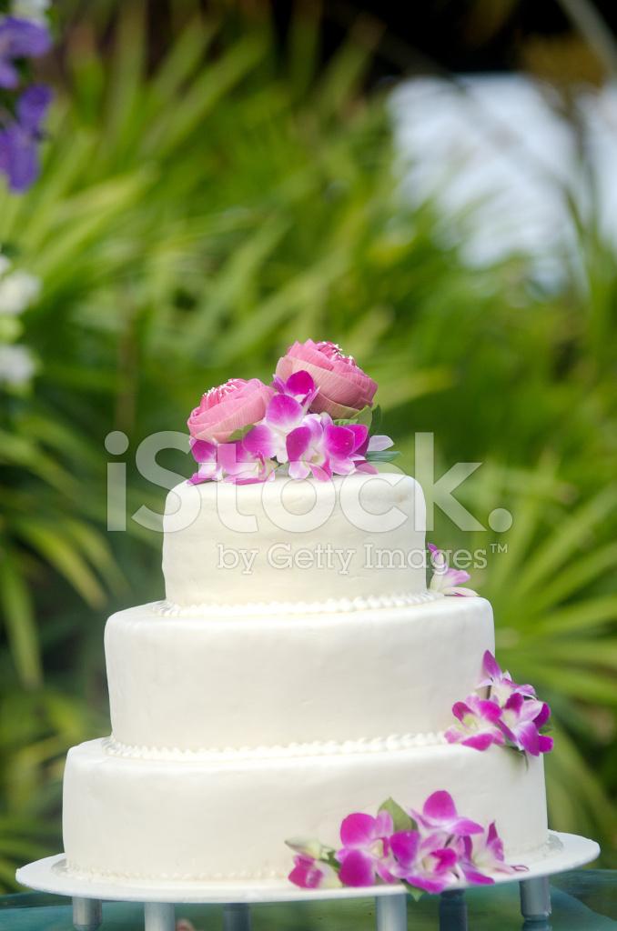 Hochzeitstorte Stockfotos Freeimages Com