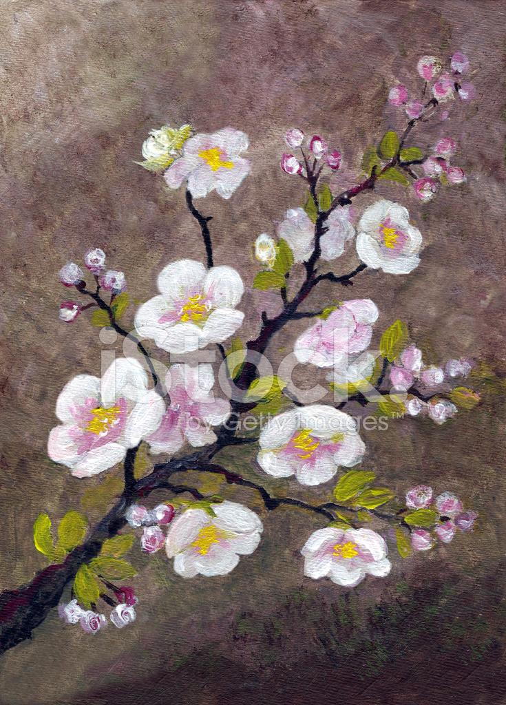 Acryl Gemalt Baum Apfelblute Stockfotos Freeimages Com