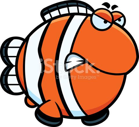 愤怒的卡通小丑鱼 Stock Vector Freeimages Com