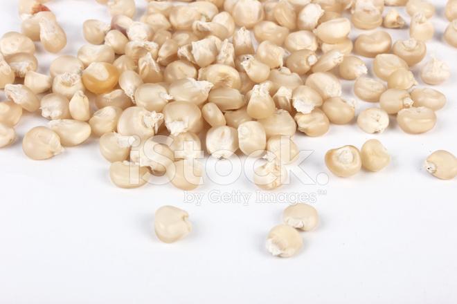 White Corn Seeds Popcorn stock photos - FreeImages.com