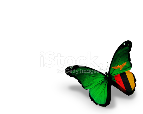 Zambia Flag Butterfly, Isolated on White Background Stock
