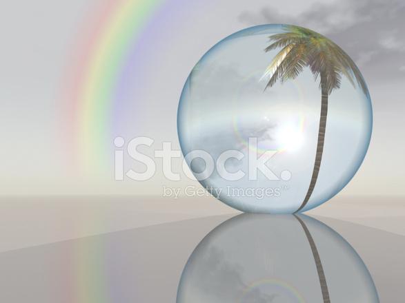 Cảm Cười...chơi - Page 40 54908606-surreal-tropical-coconut-tree-globe