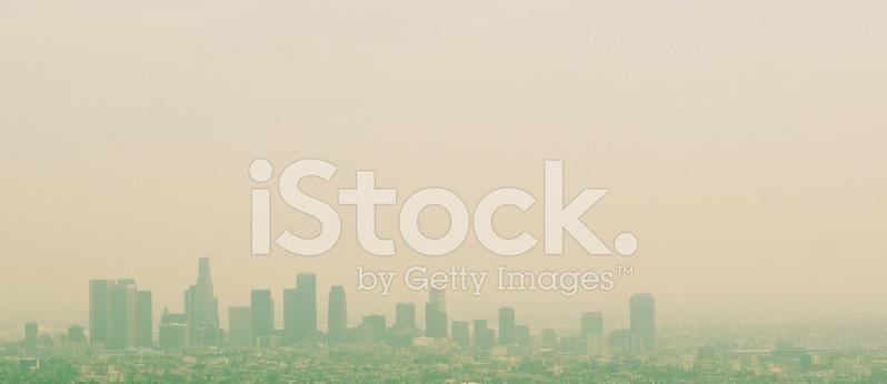 Web Design Horizon Los Angeles