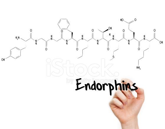 Bildresultat för endorfiner