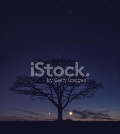 Planetary Alignment Stock Photos - FreeImages com