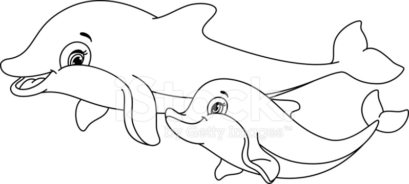 Pgina Para Colorear DE Delfines fotografas de stock  FreeImagescom