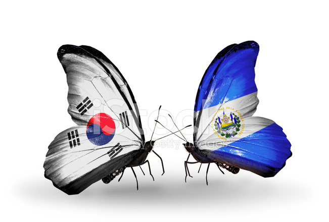 Indian Flag Butterflies: Two Butterflies With Flags On Wings Stock Photos