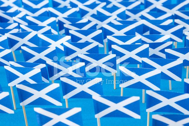 Scottish Flags Stock Photos Freeimages Com