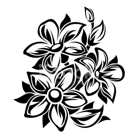 Fiori Bianchi E Neri.Ornamento Di Fiori Bianchi E Illustrazione Stock Vector