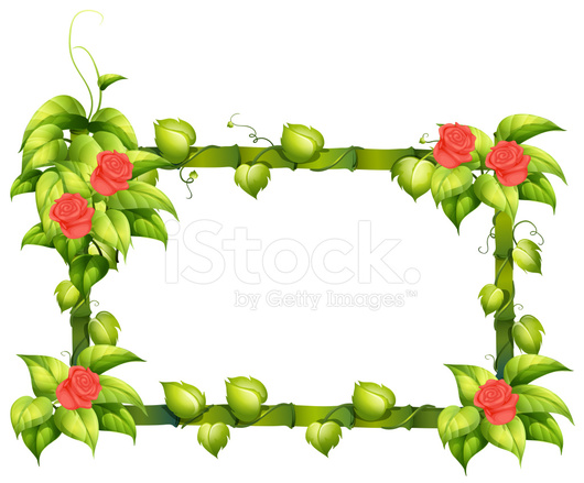 Floral Border Design Stock Vector - FreeImages.com
