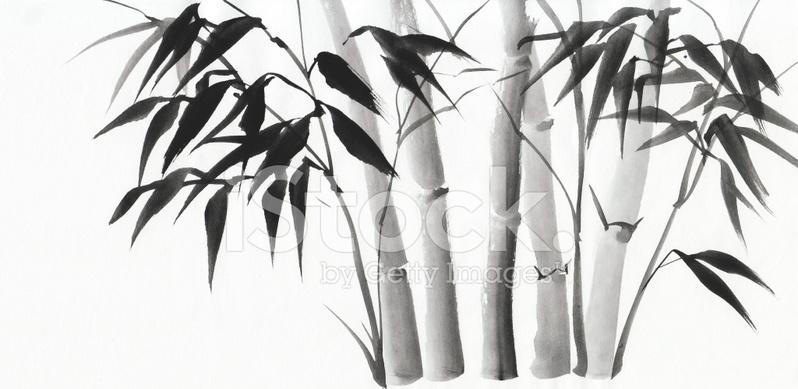 Aquarell Von Bambus Stockfotos Freeimages Com