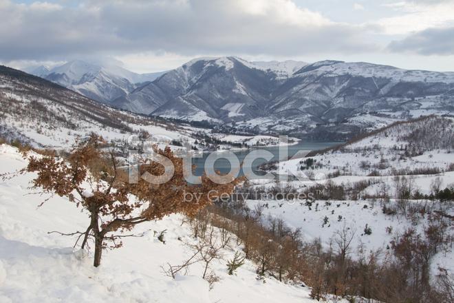 シビッリーニ山脈国立公園でフィ...