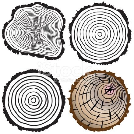 Arbre vectoriel anneaux de fond et j 39 ai vu coupe tronc d 39 arbre photos - Tronc d arbre coupe ...