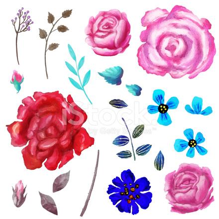çiçek Sulu Boya Seti çiçekler Ve Yapraklar El Boyalı Stock Vector