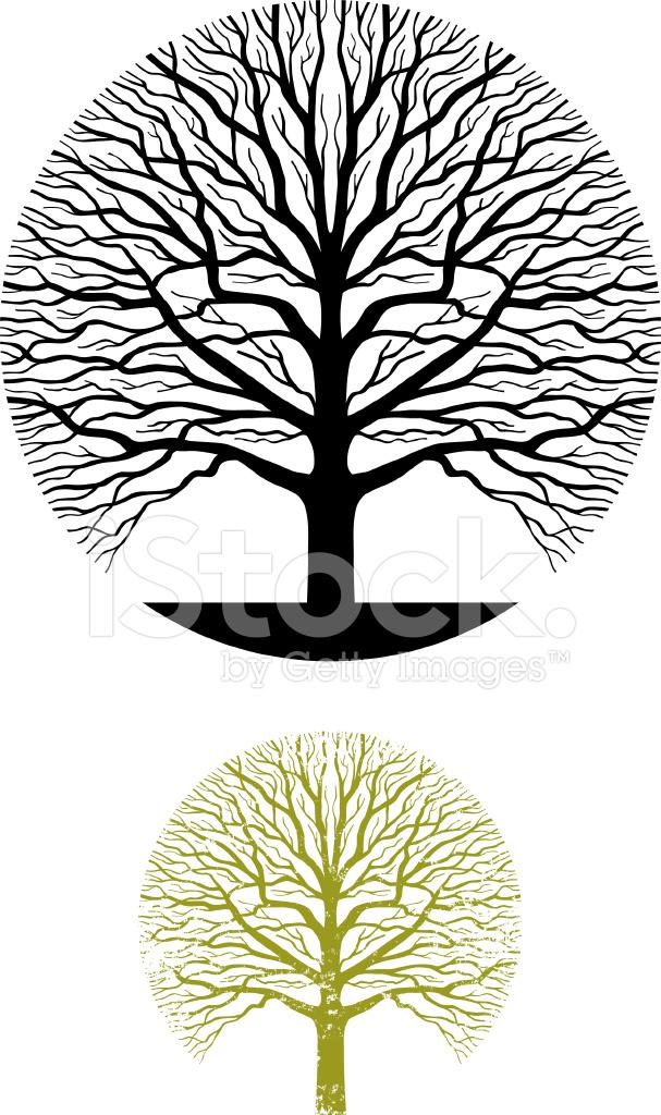 Oak Tree Sym... Oak Tree Symbolism Marriage