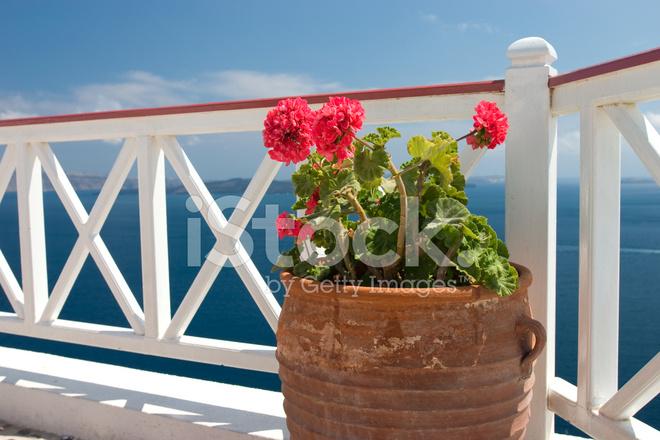 Vazen Op Balkon : Bloemen in vaas op zomer balkon stockfoto s freeimages