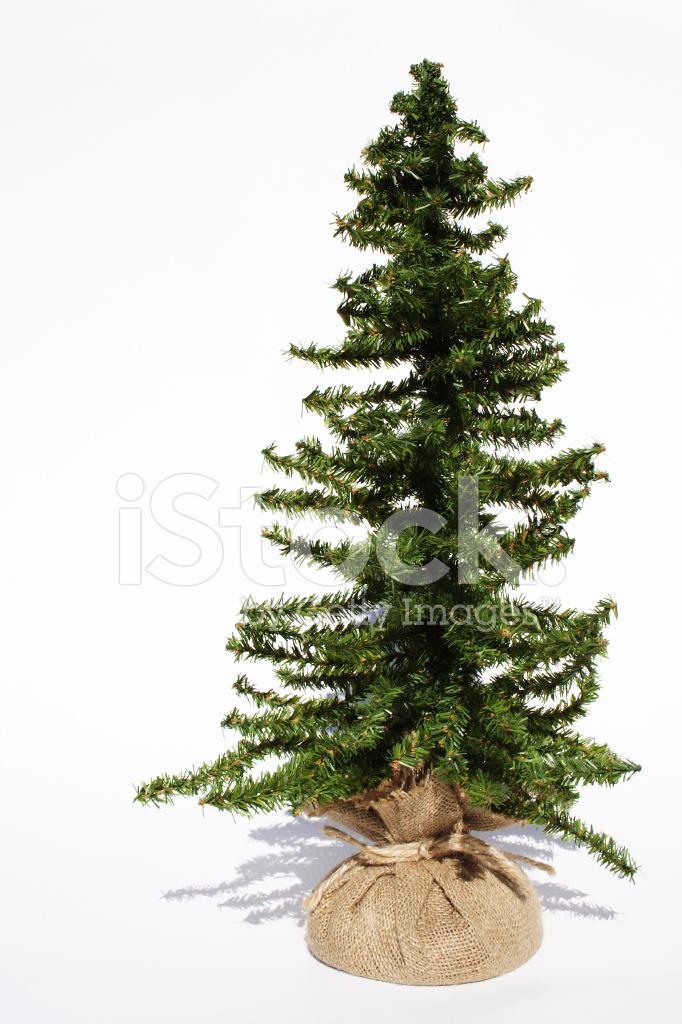 Bare Christmas Tree Ready TO Decorate Stock Photos ...