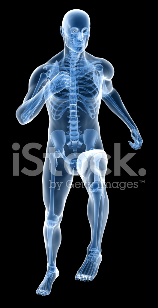 Cuerpo Humano DE Rayos X DE Un Hombre Con Esqueleto Funcionando