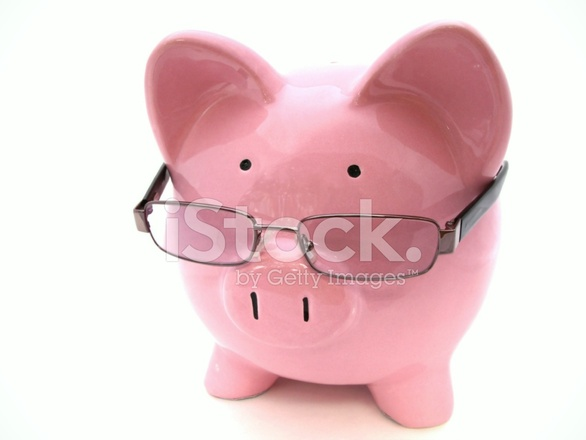 戴著眼镜的小猪 库存相片 - freeimages.com