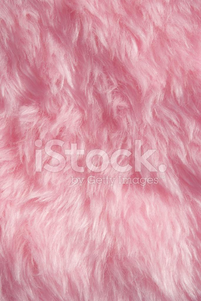 Sfondo Rosa Peloso Fotografie Stock Freeimagescom
