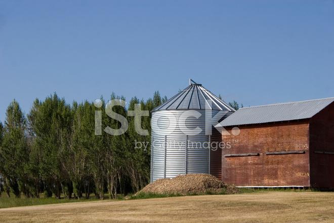 ファームの穀倉地帯 ストックフ...
