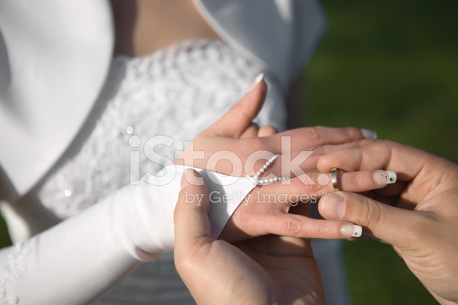 Wedding Rings Exchange Stock Photos Freeimages Com