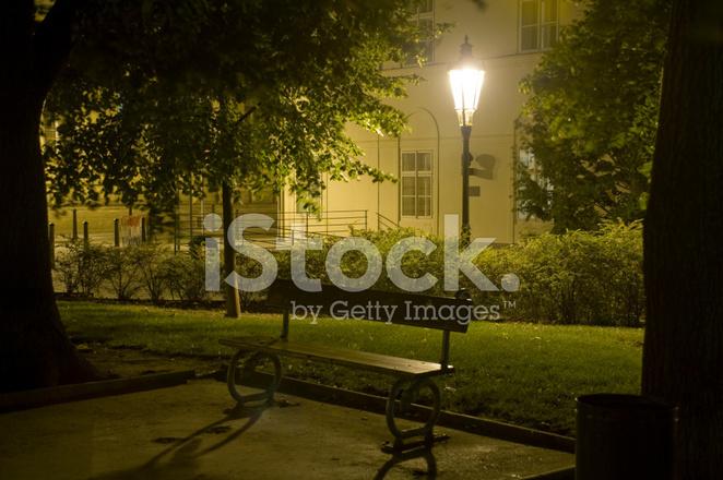 Park Bench At Night Stock Photos Freeimages Com