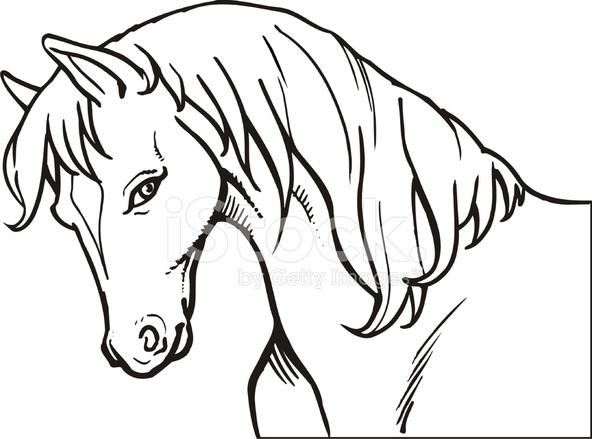 horse head stock vector