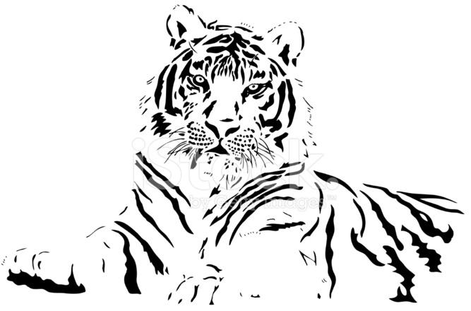 tiger vector stock vector freeimages com