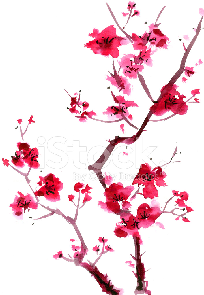 Japanese Art Cherry Blossom Tree Drawing