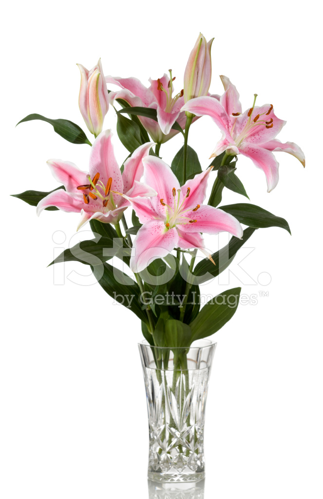 Tiger Lilies In Vase Stock Photos Freeimages