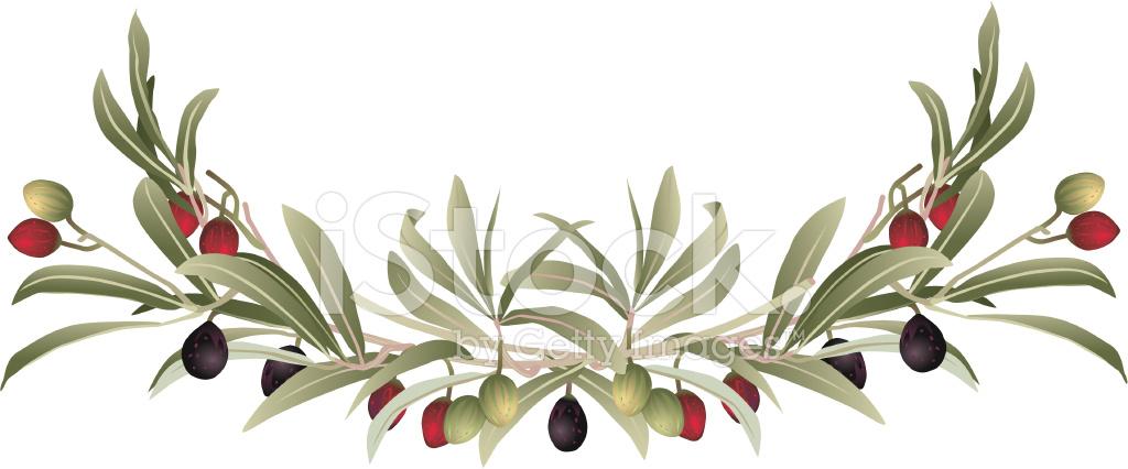 Decorative Olive Branch Border Stock Vector