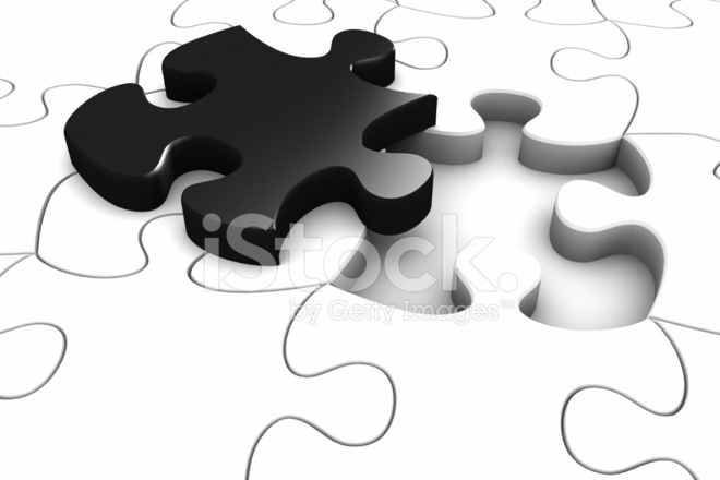 Black Jigsaw Piece In A White Puzzle