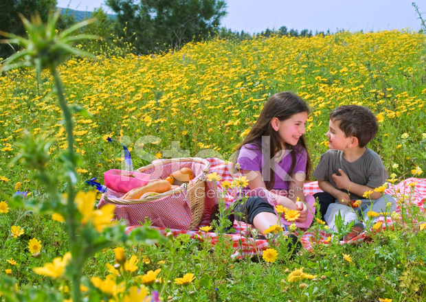 Boy And Girl Having A Picnic In A Flowers Field Stock