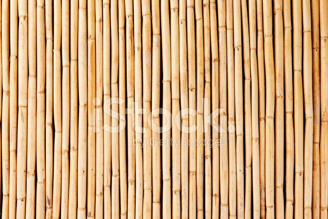 Bamboo Cane Background Or Texture Stock Photos