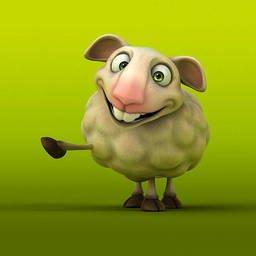 羊照片素材 Freeimages Com