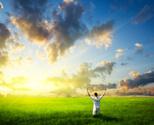 Sunrise - Dawn,Sun,Joy,Fiel...