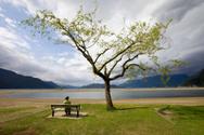 Landscape,People,Nature,Tre...