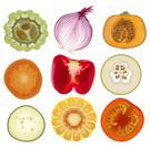 Onion,Slice,Cucumber,Cross ...